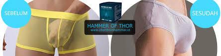 jual hammer of thor asli obat thor s hammer di jakarta