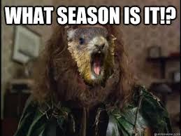 Groundhog Meme - what season is it groundhog day quickmeme