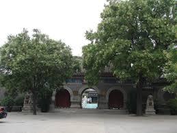駘ection bureau association the useless tree taoism