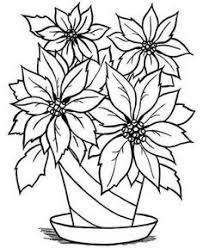 poinsettia coloring pages pin by shehnaz khayoom on sketches of flowers in a vase pinterest