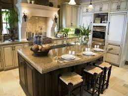 gourmet kitchen ideas gourmet kitchens search home kitchens