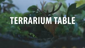 terrarium table youtube