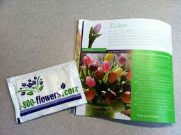 flower food packets 1 800 flowers a bit of kic