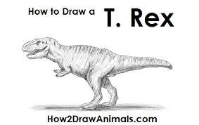 draw tyrannosaurus rex rex