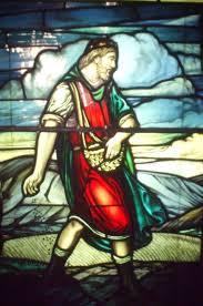 parable of the sower krausekorner