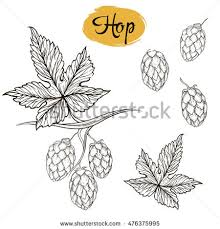vector seamless pattern line sketches leaves stock vector