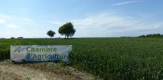 chambre d agriculture chambres d agriculture le sénat pose un garde fou à la régionalisation