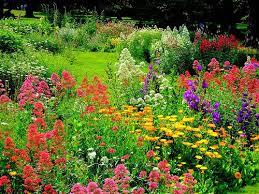 25 beautiful english gardens ideas on pinterest beautiful