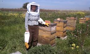 Raising Bees In Backyard by Food Forest Farm West Garden Coaching Chicken U0026 Bee Consulting