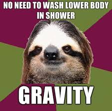 Funny Sloths Memes - no need to wash lower body in shower gravity funny sloth memes
