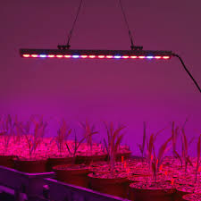 red and blue led grow lights populargrow 10pc lot 54w waterproof led grow light strip for plant