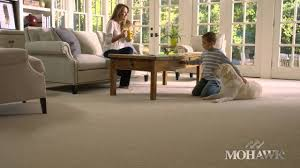 Best Laminate Flooring For Pets Best Carpet For Pets Youtube