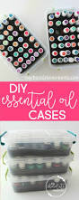 Inexpensive Storage Solution Diy Essential Oil Storage Solutions