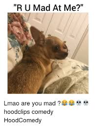 Are You Mad At Me Meme - 25 best memes about u mad u mad memes