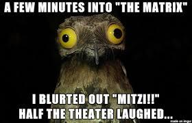 Happy Birthday Owl Meme - happy birthday hugo meme on imgur