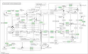 Smu Map Smu00500 Png