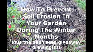 how to prevent soil erosion in your vegetable garden during the