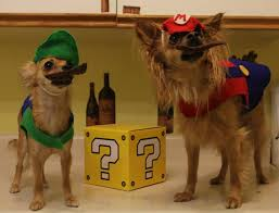 Halloween Costumes Luigi Mario Luigi Costumes Regina Fox Modeled Winston