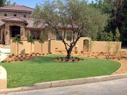 California Landscaping Ideas Artificial Turf Albany California Landscape Ideas Front Yard