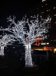 solar powered fairy lights for trees download solar lights for trees solidaria garden