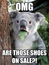 omg are those shoes on sale koala bear quickmeme