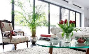 Decorative Vases For Living Room by Living Room Accessories Glass Vase Decorative Living Room