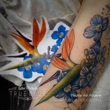 bird of paradise strelizia true blue professional tattoo