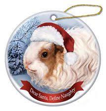 guinea pig hat ebay