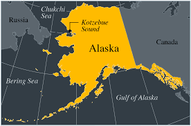 Kotzebue Alaska Map by In The Arctic Birds Reveal An Ocean And A Planet In Flux