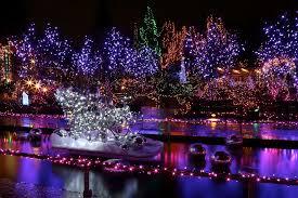 vancouver christmas light maze lights enjoy canada