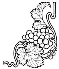 grape vine branches ornament raster illustration engraving style