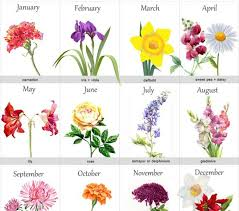 tattoo flower drawings april flower tattoo april flower tattoo flower inspiration