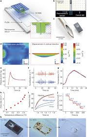 bioresorbable silicon electronic sensors for the brain nature