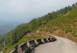 Rock Garden Darjeeling Road To Rock Garden Darjeeling India Travel Forum Indiamike