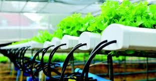 hertz light tower rental agriculture hertz equipment rental