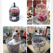 compare prices on bird cage decor shopping buy low price