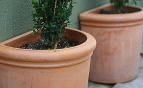 save water save money seal terracotta pots with a household