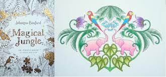 magical jungle 36 postcards colour send u2013 review