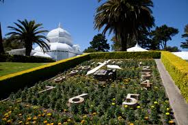 flowers san francisco file san francisco conservatory of flowers 6 jpg wikimedia commons