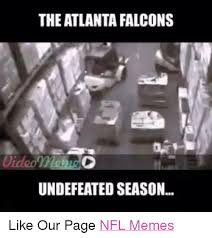 Atlanta Falcons Memes - 25 best memes about falcon falcon memes