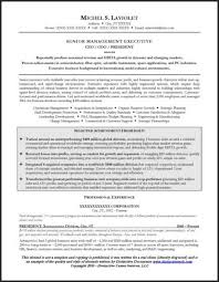 ceo resume template resume sle for a ceo
