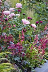 Plant Flower Garden - best 25 pink garden ideas on pinterest pink flower names