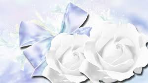 flowers pail flower petals romantic tin still buttons photography winters firefox crystals ribbon bow cool rose roses winter persona blue white ice flower wallpapers iphone