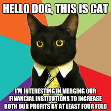 This Is Dog Meme - hello dog this is cat meme cat planet cat planet