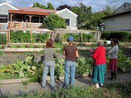 organic farming becky u0027s farming blog