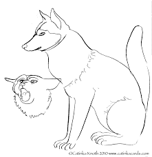 sledding coloring pages husky dog coloring pages bestofcoloring com