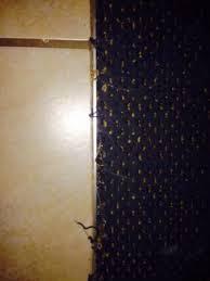 Bridgeport Carpet Dirty Hallway Carpet Picture Of Wingate By Wyndham Bridgeport