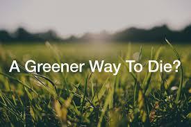 bio cremation bio cremation a greener way to die talkdeath