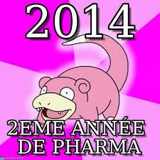 Slowpoke Meme - 2014 slowpoke meme on memegen
