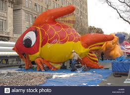 inflating the balloons for the macy s thanksgiving day parade